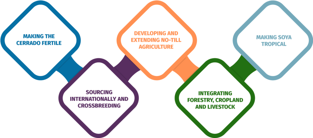Five key steps of tropical agriculture