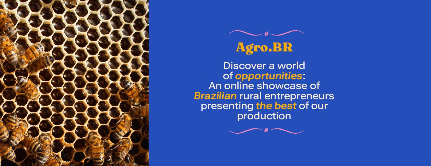 Discover Agro.br - Brazilian rural entrepreneurs
